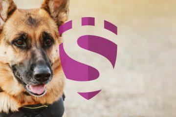 SECAREER Stellenboerse Diensthundeführer Operative Ebene